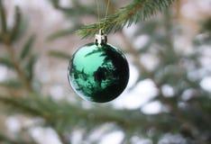 Christmas ball hanging on fir tree Royalty Free Stock Image