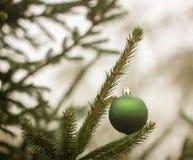 Christmas ball hanging on fir tree Stock Photography
