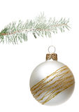 Christmas ball hanging on a fir-tree, isolated Royalty Free Stock Photo