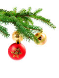 Christmas ball hanging on a fur tree. Red and gold Christmas ball hanging on a pine tree Royalty Free Stock Photography
