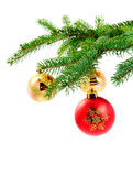 Christmas ball hanging on a fur tree. Red and gold Christmas ball hanging on a pine tree Stock Photos