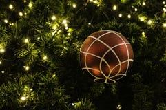 Christmas ball hanging on tree. Stock Image