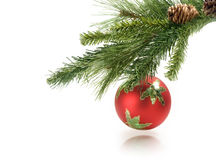 Christmas ball hanging on white background Stock Photos