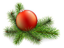 Christmas ball lies on the spruce branches Royalty Free Stock Photography