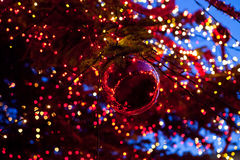Christmas ball with ornament lights on a tree. Outdoor at dusk Royalty Free Stock Image