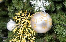 Christmas ball, ornaments and decorations on green fir tree branches Stock Photos
