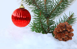 Christmas Ball and Pine Stock Images