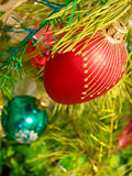 Christmas ball on a pine branch. Stock Photos