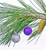 Christmas ball on pine fir tree branches isolated. On white Royalty Free Stock Photo