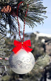 Christmas ball on pine outdoor. Stock Images