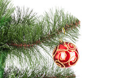 Christmas ball pine tree branch Royalty Free Stock Photos