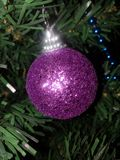Christmas ball on pine tree. Christmas ball decoration on pine tree Royalty Free Stock Photo