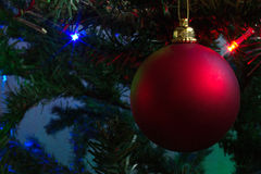 Christmas ball on the pinetree. Royalty Free Stock Photography