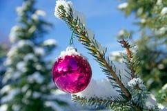 Christmas ball snow Stock Images