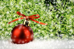 Christmas Ball on Snow with Christmas Tree. Stock Images