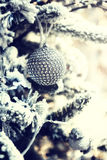 Christmas ball on snow covered fir tree Royalty Free Stock Photos