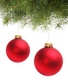 Christmas ball and spruce branch Stock Image