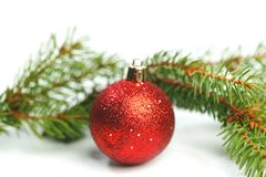 Christmas ball and spruce branch. Christmas ball and green spruce branch isolated white background Stock Photography