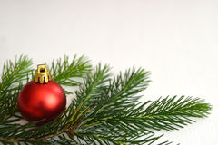 Christmas ball and spruce branch. On light background Stock Images