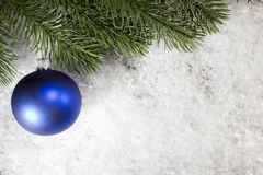 Christmas ball and spruce branch Royalty Free Stock Images