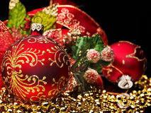 Christmas ball and spruce twig. Stock Image