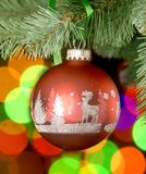 Christmas ball on tree. With lights behind Royalty Free Stock Photography