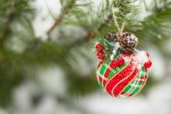 Christmas ball on tree Royalty Free Stock Image