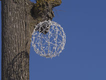 Christmas ball in tree with blue skies Royalty Free Stock Image