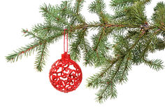 Christmas ball on the tree Royalty Free Stock Image
