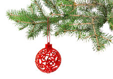 Christmas ball on the tree Stock Photography