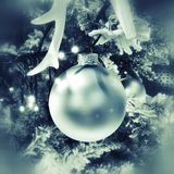 Christmas ball on tree Royalty Free Stock Images