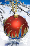 Christmas ball on winter tree Stock Photography