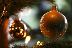 Christmas balls. Hanging in a christmas tree Stock Image