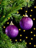 Christmas balls. Hanging in tree on black background with gold stars Royalty Free Stock Images
