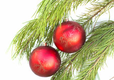 The christmas balls on the brach Stock Photos