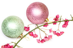 Christmas balls and branch of bush Royalty Free Stock Images