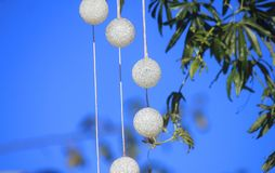 Christmas balls on a branch. Some Christmas balls on a branch of the tree stock photos