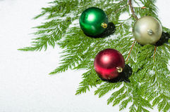 Christmas balls on cedar greens Royalty Free Stock Photography
