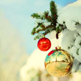 Christmas Balls on Christmas tree branch with Snow Stock Photos