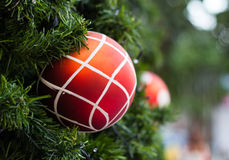 Christmas balls and Christmas tree Stock Images