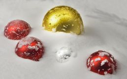 Christmas balls covered with snow. Red and golden christmas balls covered with snow Stock Images
