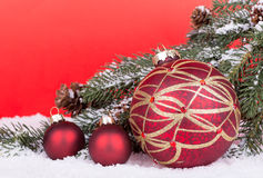 Christmas Balls with evergreen tree branch Royalty Free Stock Image