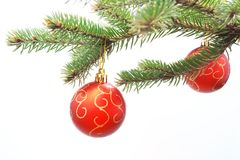 Christmas balls on fir branch Royalty Free Stock Photos