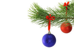 Christmas balls on fir tree branch Stock Photography