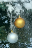 Christmas balls on a fir-tree in snow Royalty Free Stock Image