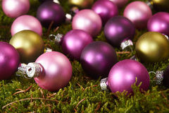 Christmas balls on green moss Royalty Free Stock Images