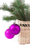 Christmas balls and green spruce branch Stock Photo