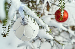 Christmas balls hanging on spruce branches Royalty Free Stock Photos