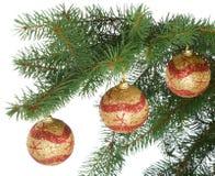 Christmas Balls On Fir Branch Royalty Free Stock Photos
