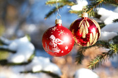 Christmas balls on outdoor snowy tree Stock Image